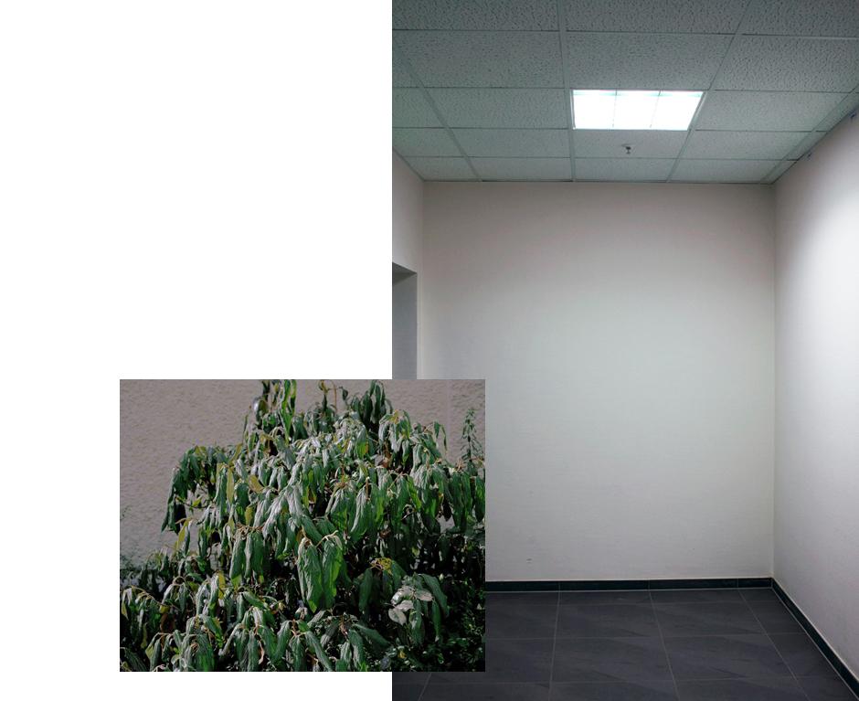 Christoph David Drange // Die Haut der Stadt
