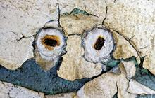 Tania Reh: Wandgeschichten